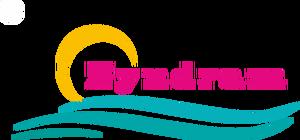 logo zyndram